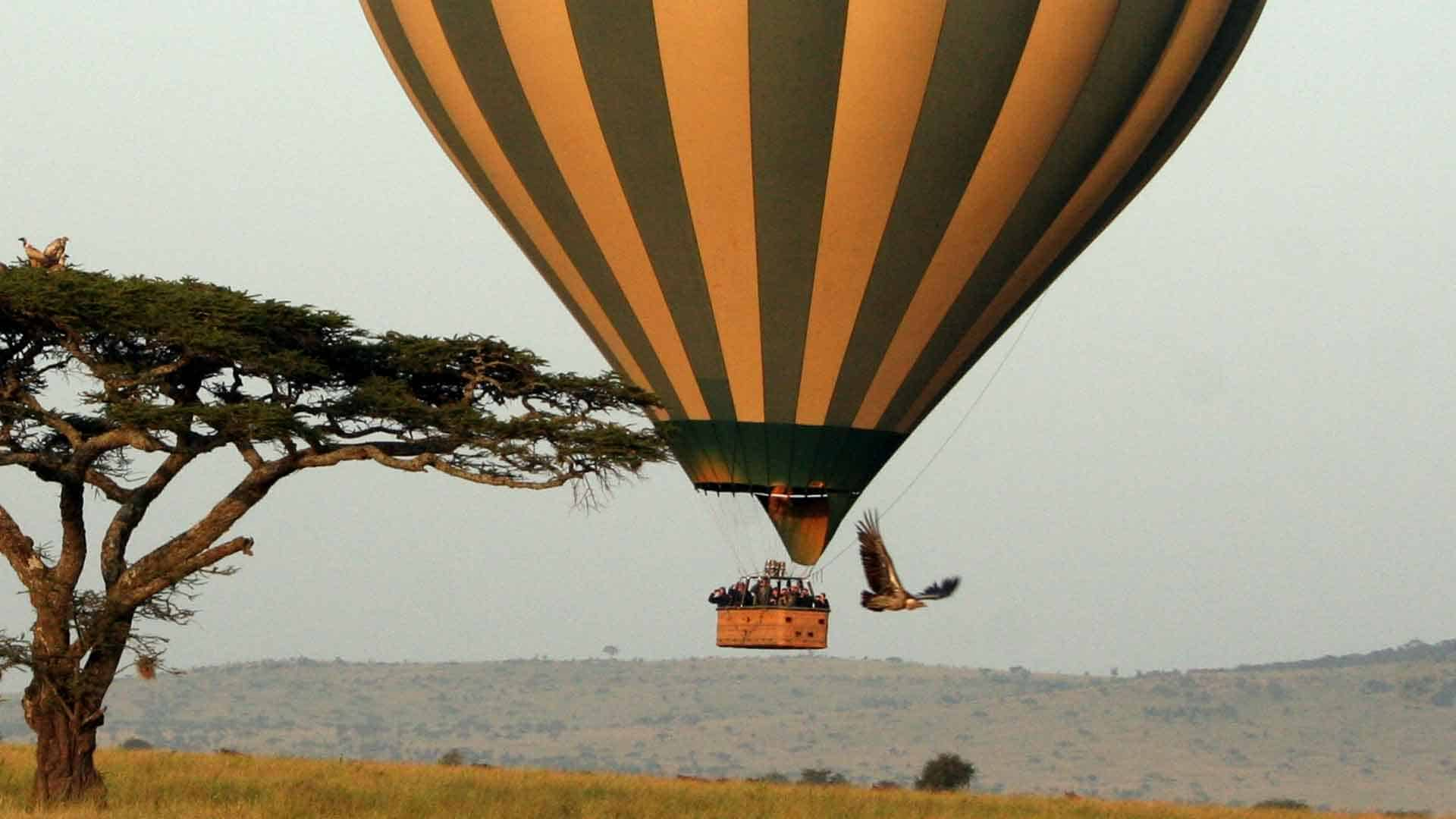 serengeti balloon safari trip