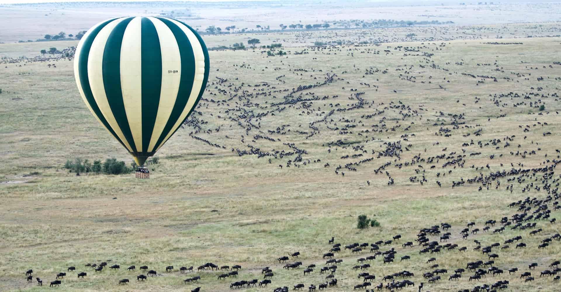 Balloon over serengeti National park on